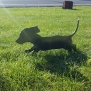 Gravhund i cortenstål